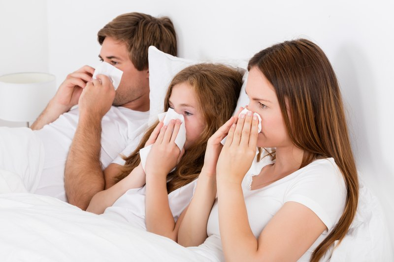 Improve In-Door Air Quality with Clean Air Ducts | Daffy Ducts