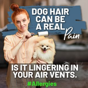 Air duct cleaning for pet hair