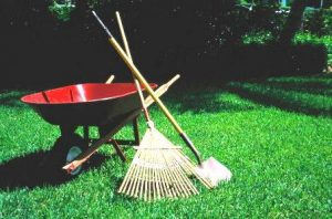 Enjoy Gardening This Summer Without Overheating